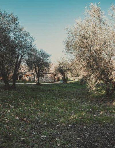 chalet-degli-sposi-8877