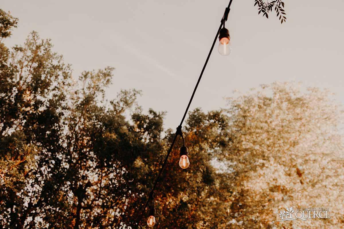fila di lampadine sugli alberi